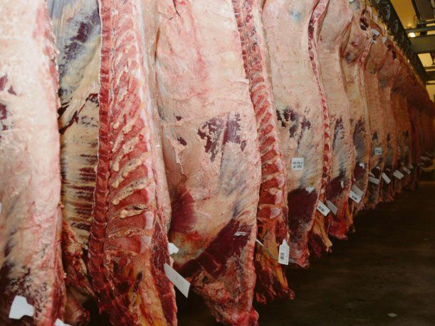 """Leonardo Rafael: """"Ningún consumidor argentino llevará a su cocina o parrilla cortes de vaca conserva"""""""