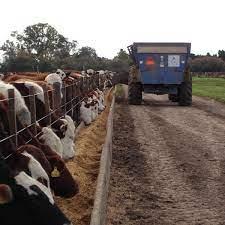 """¿Nuevos ROE? Este viernes arrancan las DJEC para la carne bovina y en el sector advierten por una """"125 ganadera"""""""