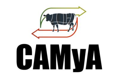 Carnes: Nuevas autoridades para solucionar viejos problemas