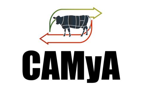 Informe CAMyA Julio 2021
