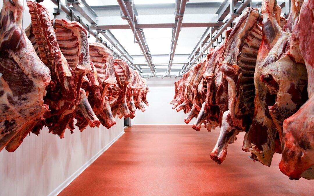 Carne: Denuncian atraso en autorizaciones y concentración de la exportación