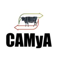 CAMyA